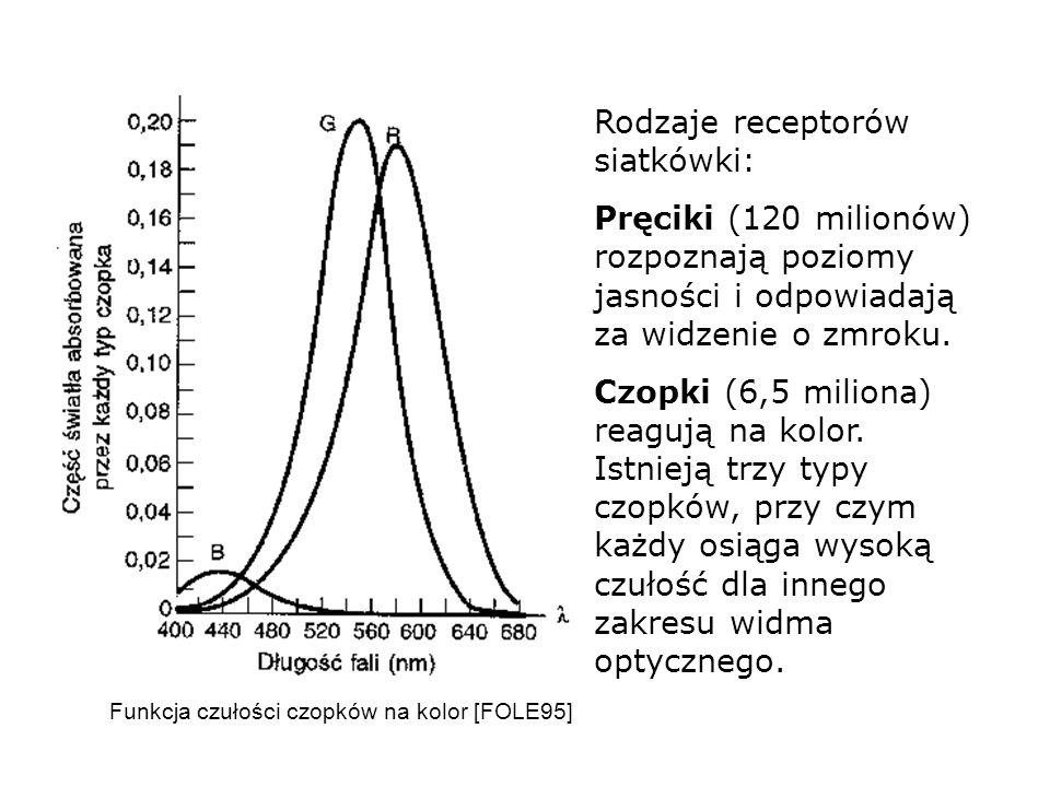 Rodzaje receptorów siatkówki: