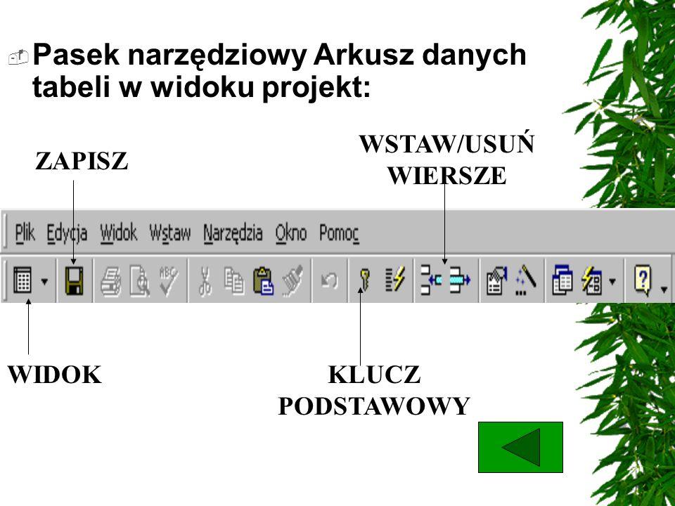 Pasek narzędziowy Arkusz danych tabeli w widoku projekt: