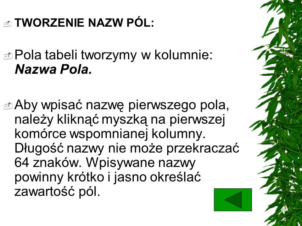 Pola tabeli tworzymy w kolumnie: Nazwa Pola.