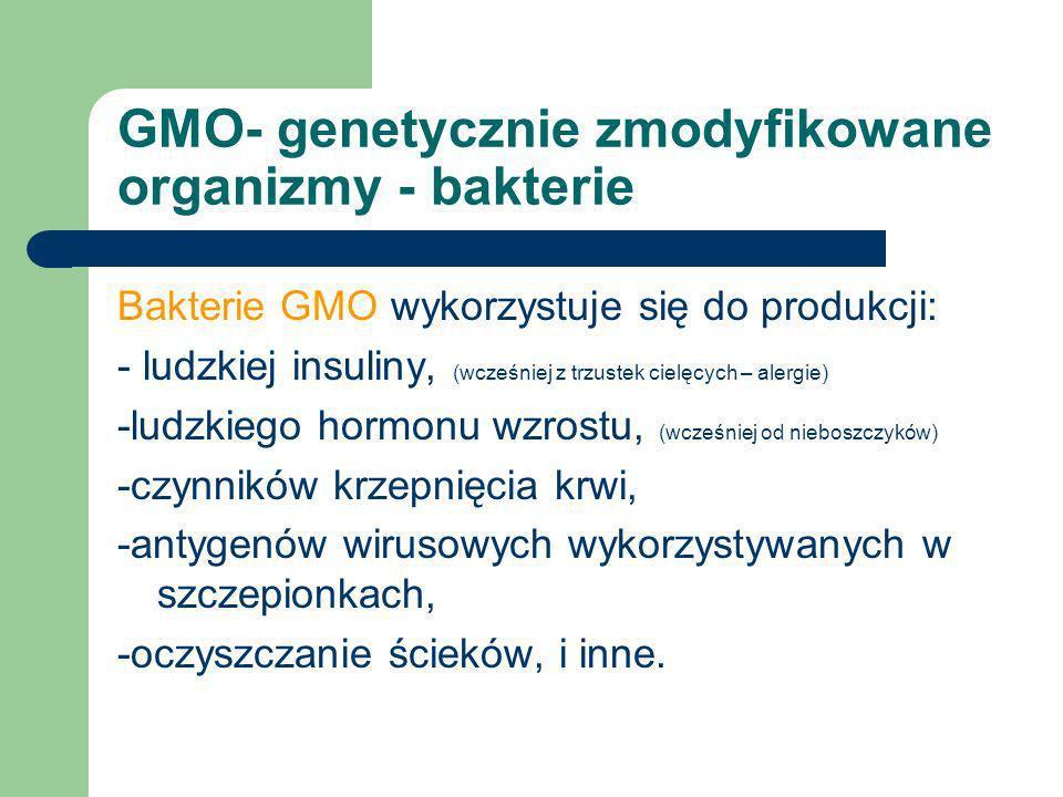 GMO- genetycznie zmodyfikowane organizmy - bakterie