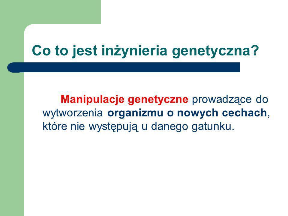 Co to jest inżynieria genetyczna