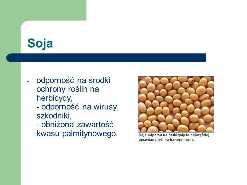 Sojaodporność na środki ochrony roślin na herbicydy, - odporność na wirusy, szkodniki, - obniżona zawartość kwasu palmitynowego.