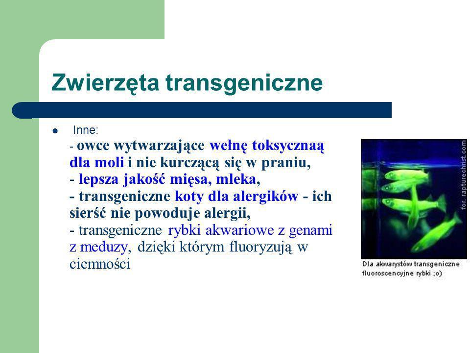 Zwierzęta transgeniczne