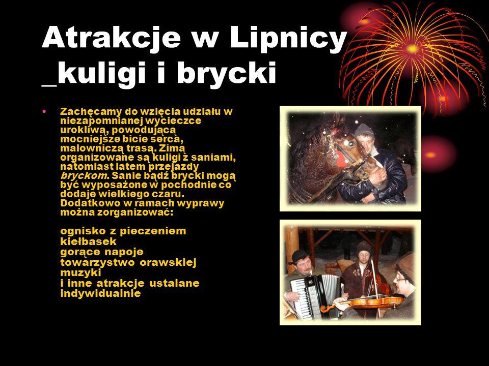 Atrakcje w Lipnicy _kuligi i brycki