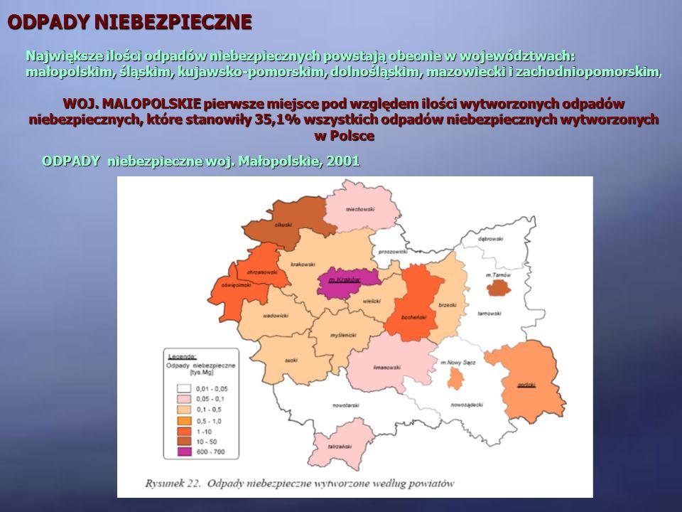 ODPADY niebezpieczne woj. Małopolskie, 2001