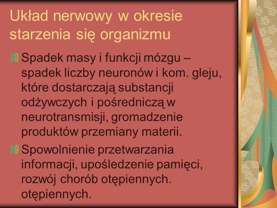 Układ nerwowy w okresie starzenia się organizmu