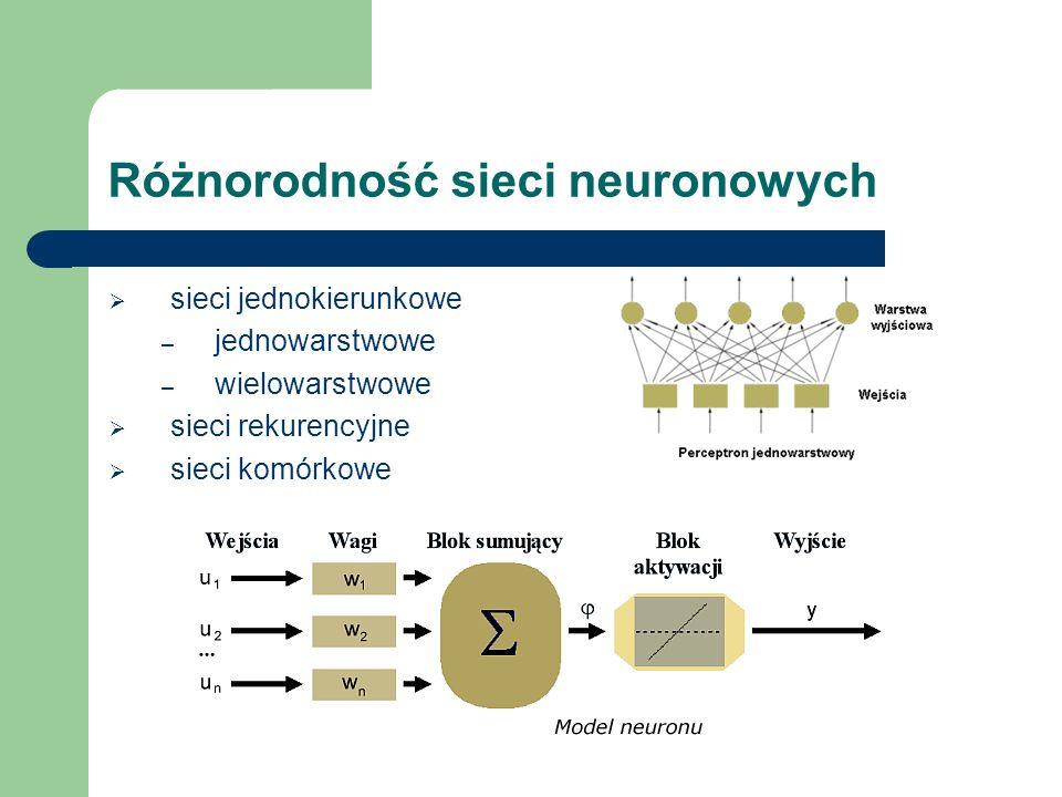 Różnorodność sieci neuronowych