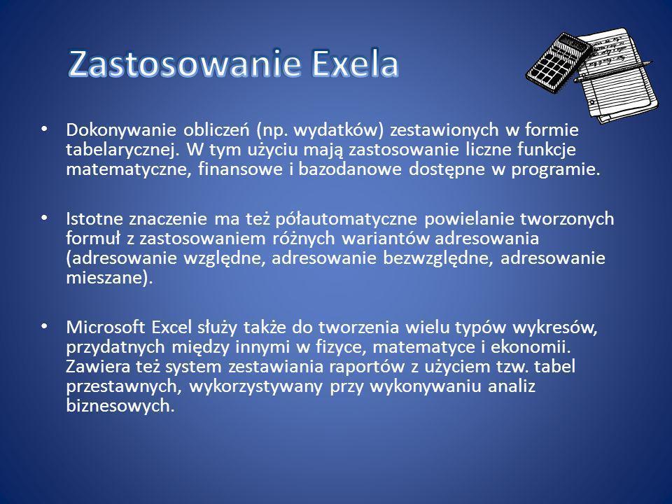 Zastosowanie Exela