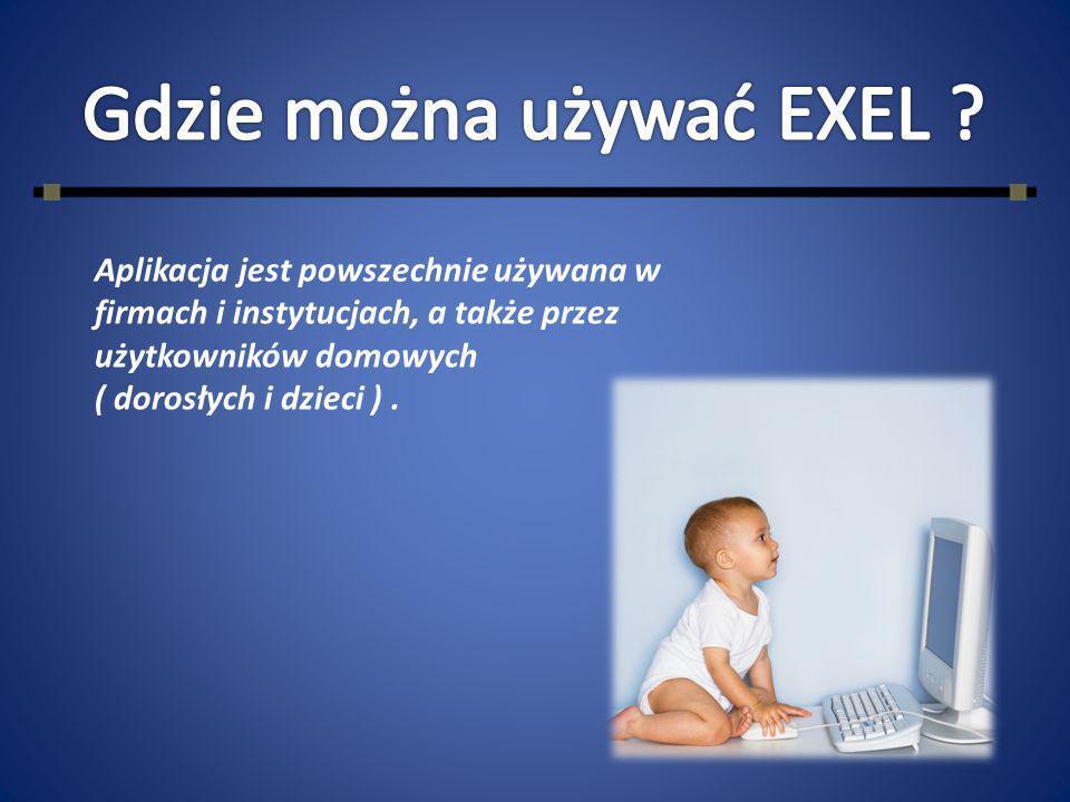 Gdzie można używać EXEL