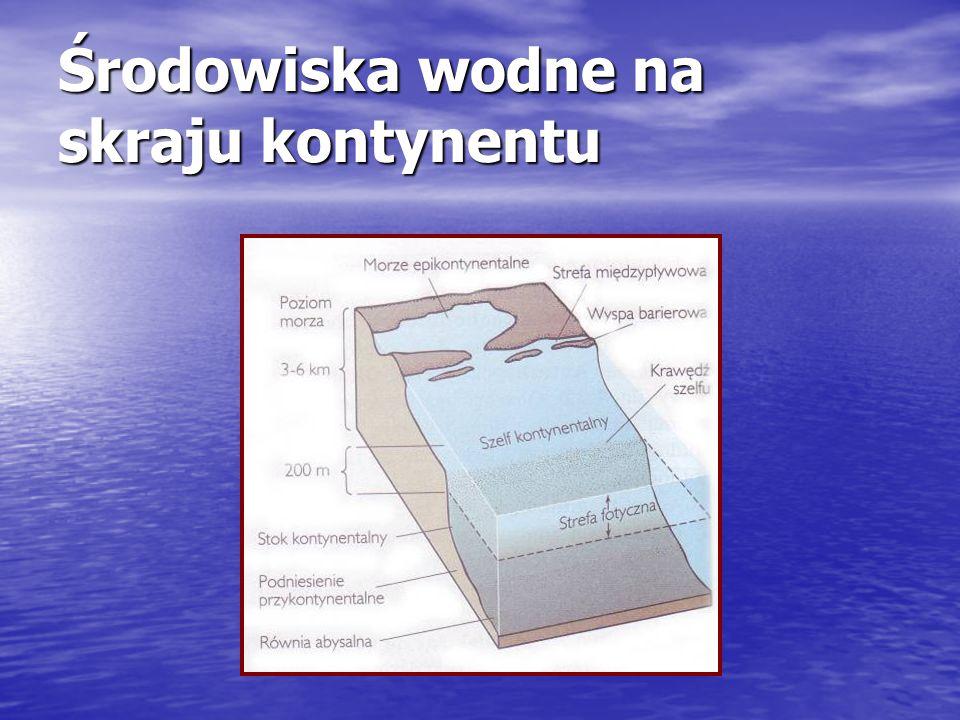 Środowiska wodne na skraju kontynentu