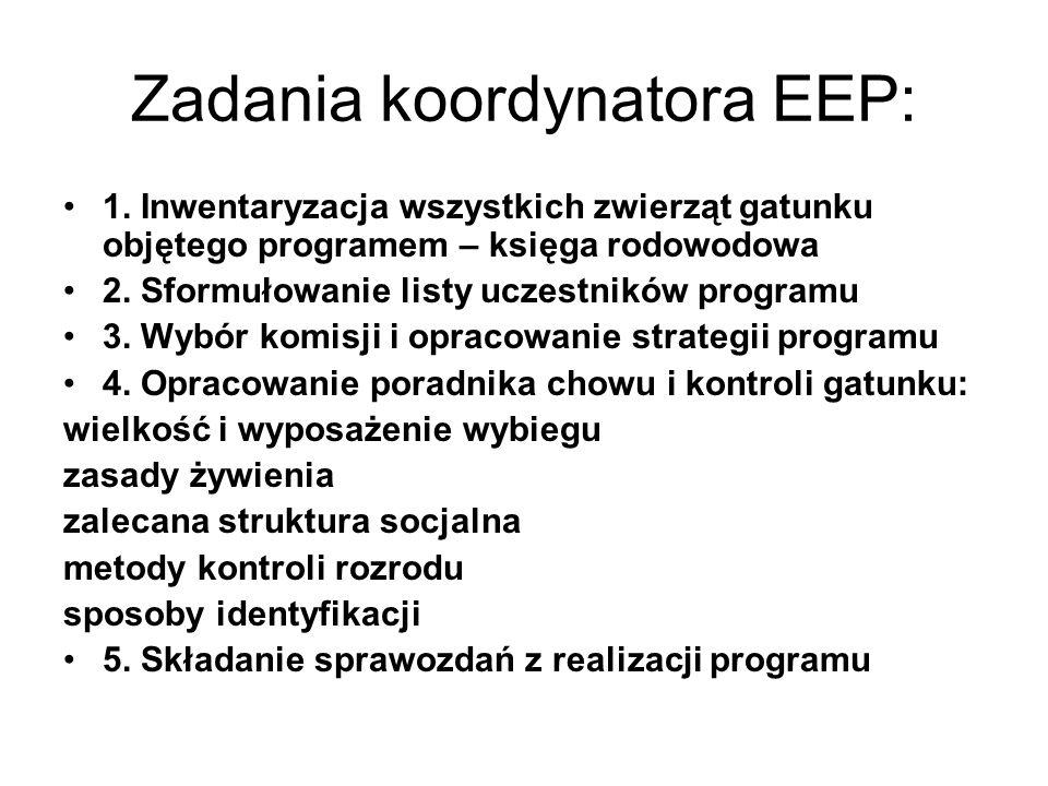 Zadania koordynatora EEP: