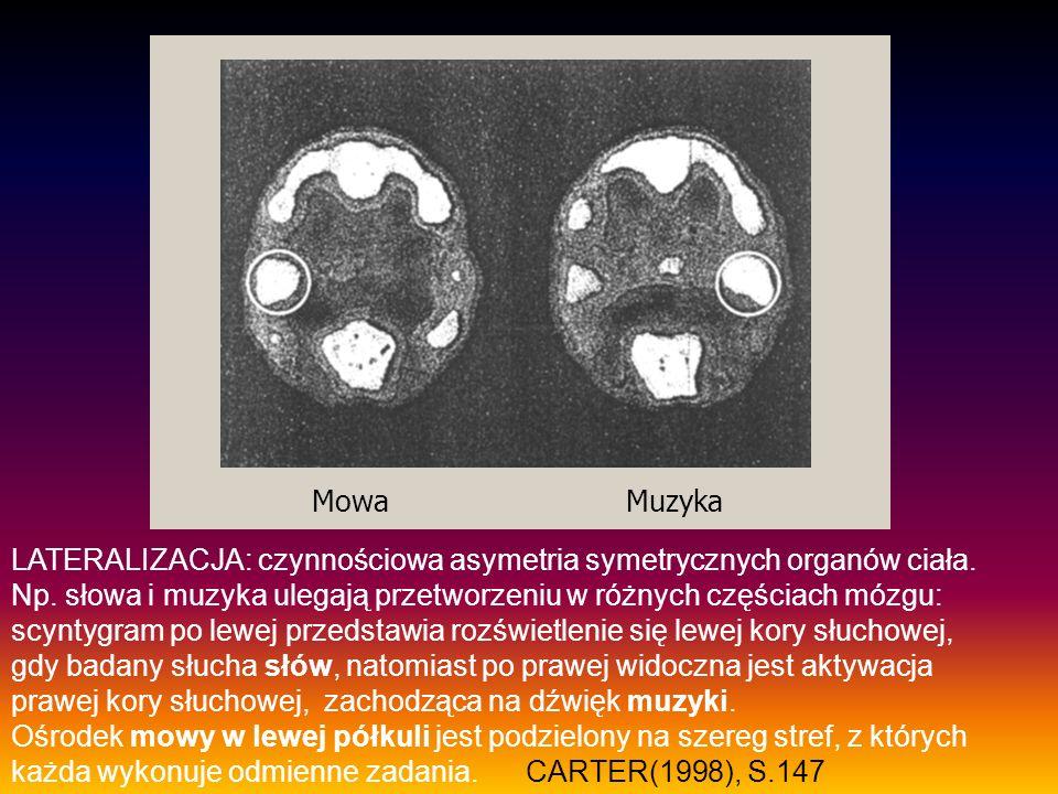 Mowa Muzyka LATERALIZACJA: czynnościowa asymetria symetrycznych organów ciała.