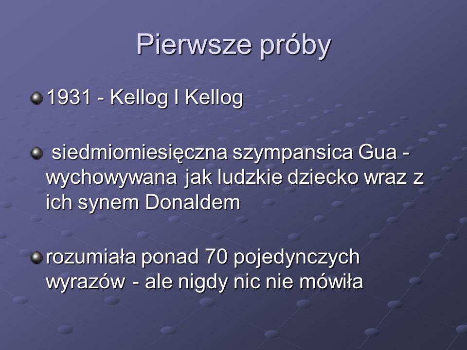 Pierwsze próby 1931 - Kellog I Kellog