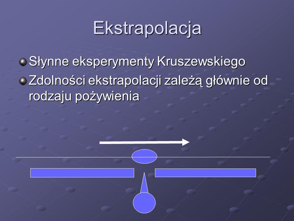 Ekstrapolacja Słynne eksperymenty Kruszewskiego