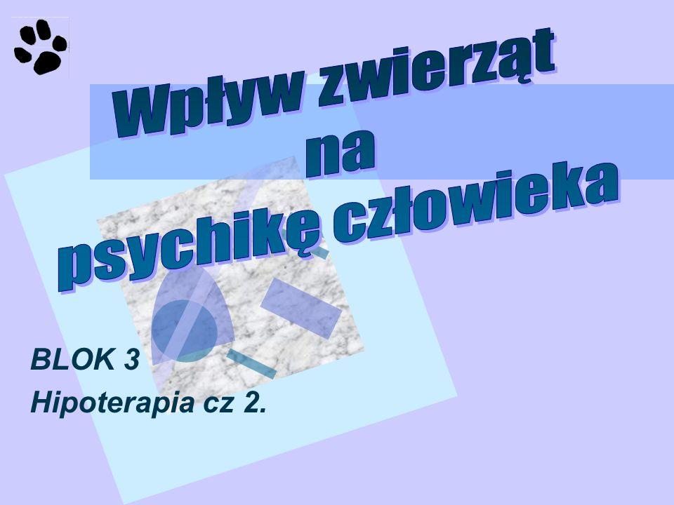 Wpływ zwierząt na psychikę człowieka BLOK 3 Hipoterapia cz 2.