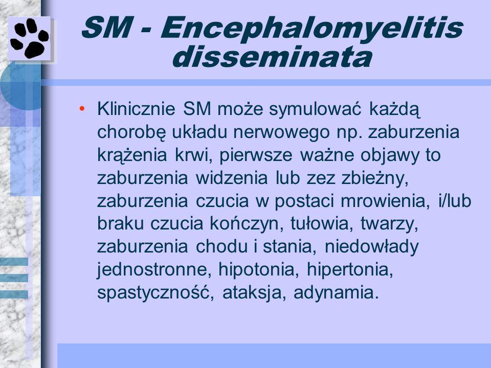 SM - Encephalomyelitis disseminata