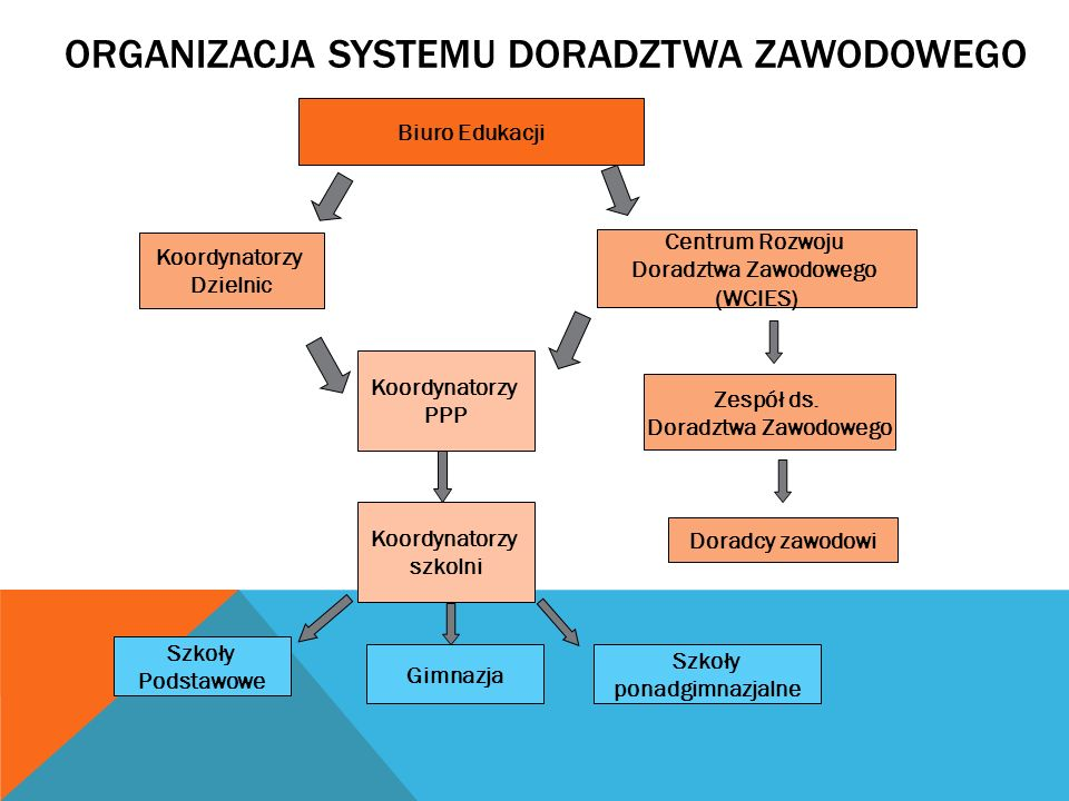Organizacja systemu doradztwa zawodowego
