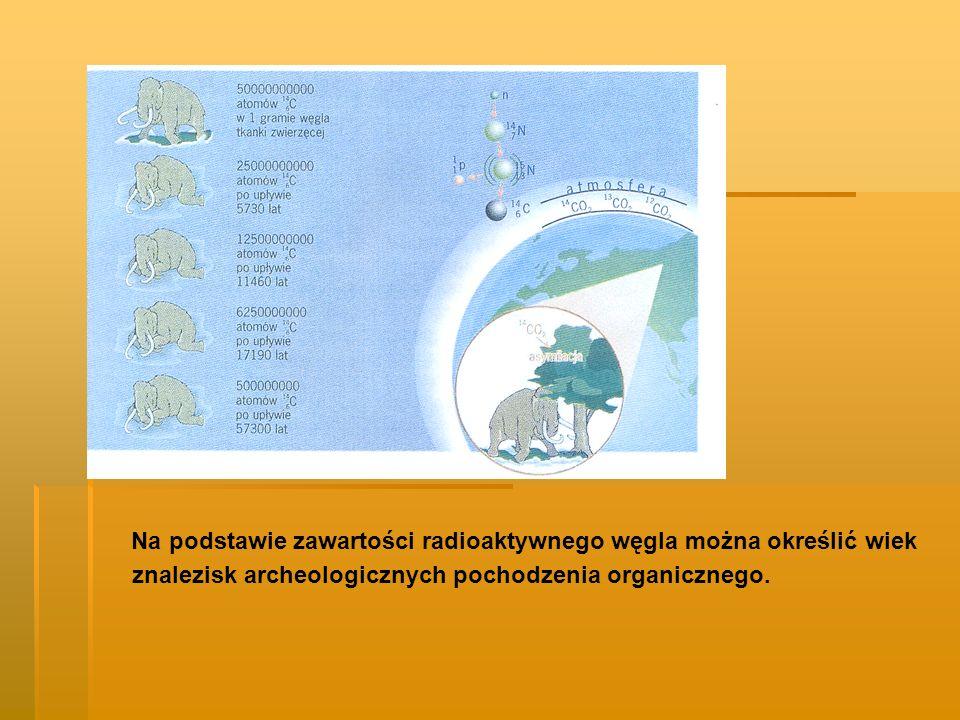 Na podstawie zawartości radioaktywnego węgla można określić wiek znalezisk archeologicznych pochodzenia organicznego.