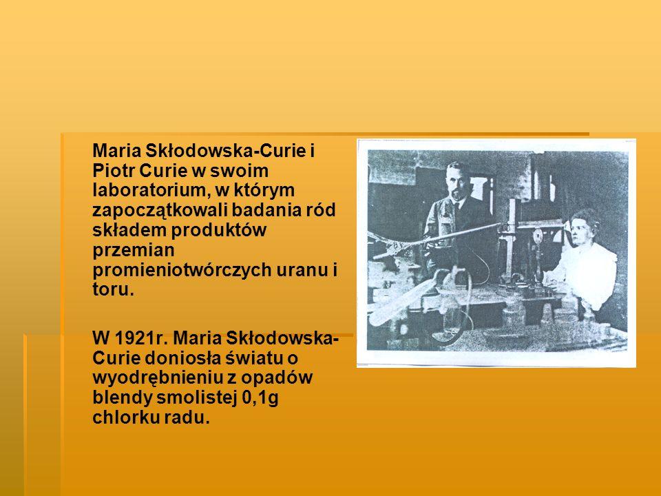 Maria Skłodowska-Curie i Piotr Curie w swoim laboratorium, w którym zapoczątkowali badania ród składem produktów przemian promieniotwórczych uranu i toru.