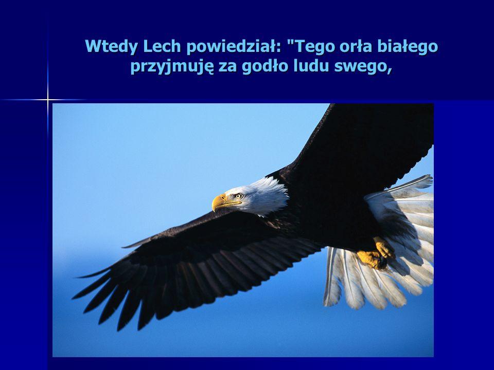 Wtedy Lech powiedział: Tego orła białego przyjmuję za godło ludu swego,
