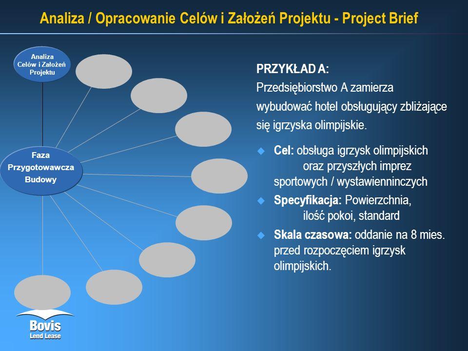 Analiza / Opracowanie Celów i Założeń Projektu - Project Brief