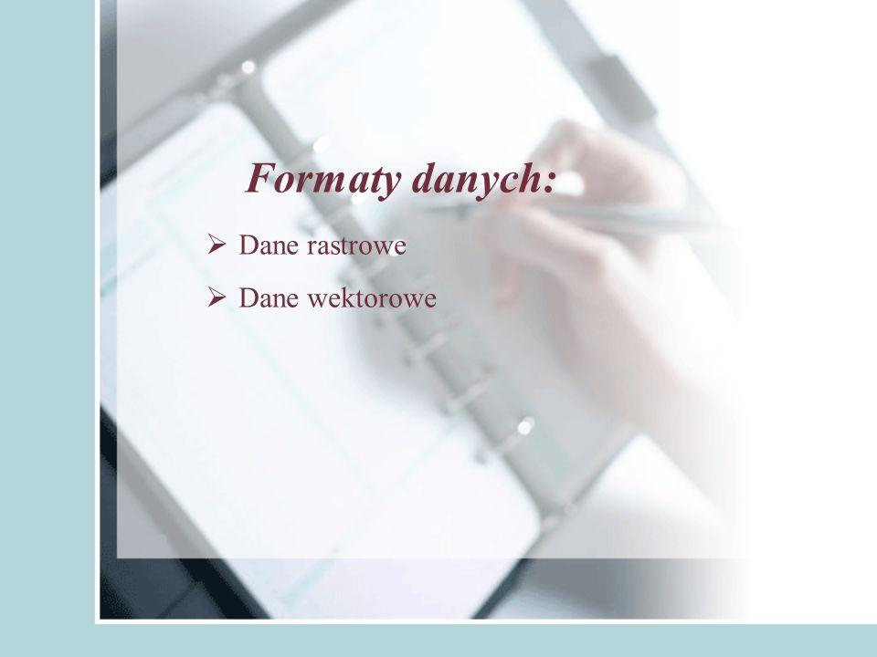 Formaty danych: Dane rastrowe Dane wektorowe