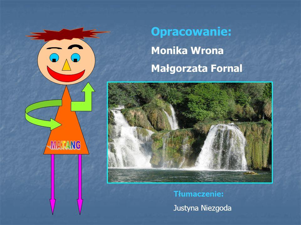 Opracowanie: Monika Wrona Małgorzata Fornal Tłumaczenie: