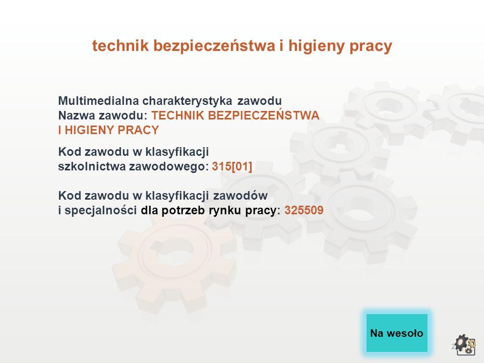 technik bezpieczeństwa i higieny pracy