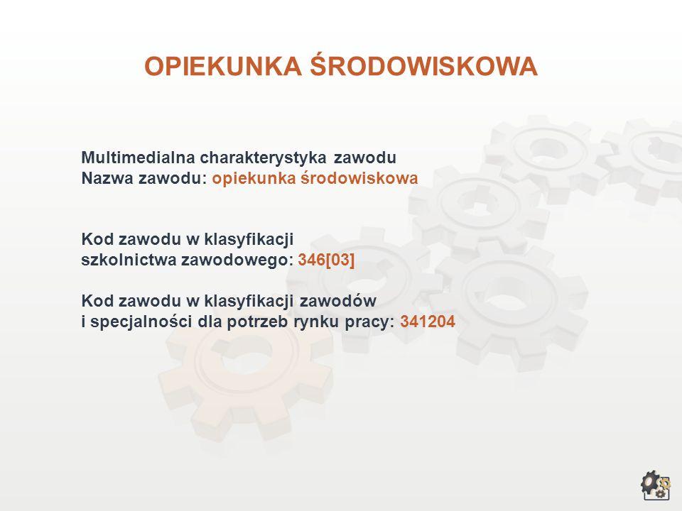 OPIEKUNKA ŚRODOWISKOWA