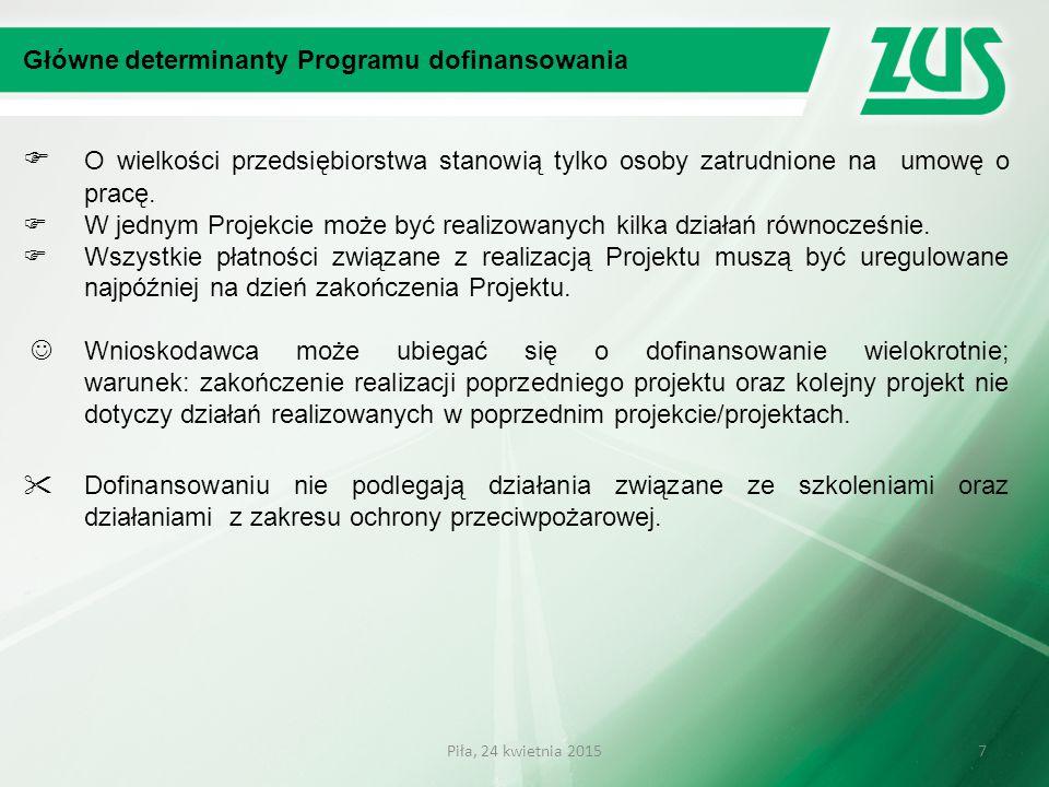 Główne determinanty Programu dofinansowania