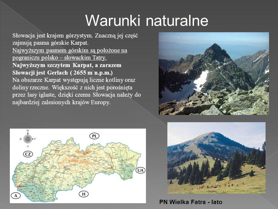 Warunki naturalne Słowacja jest krajem górzystym. Znaczną jej część zajmują pasma górskie Karpat.