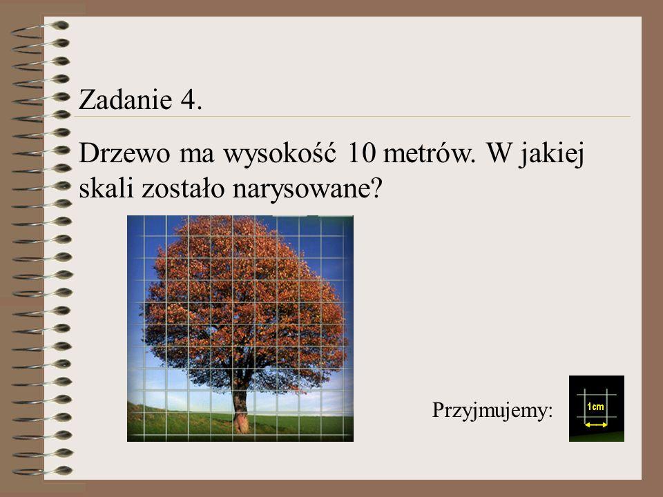 Drzewo ma wysokość 10 metrów. W jakiej skali zostało narysowane