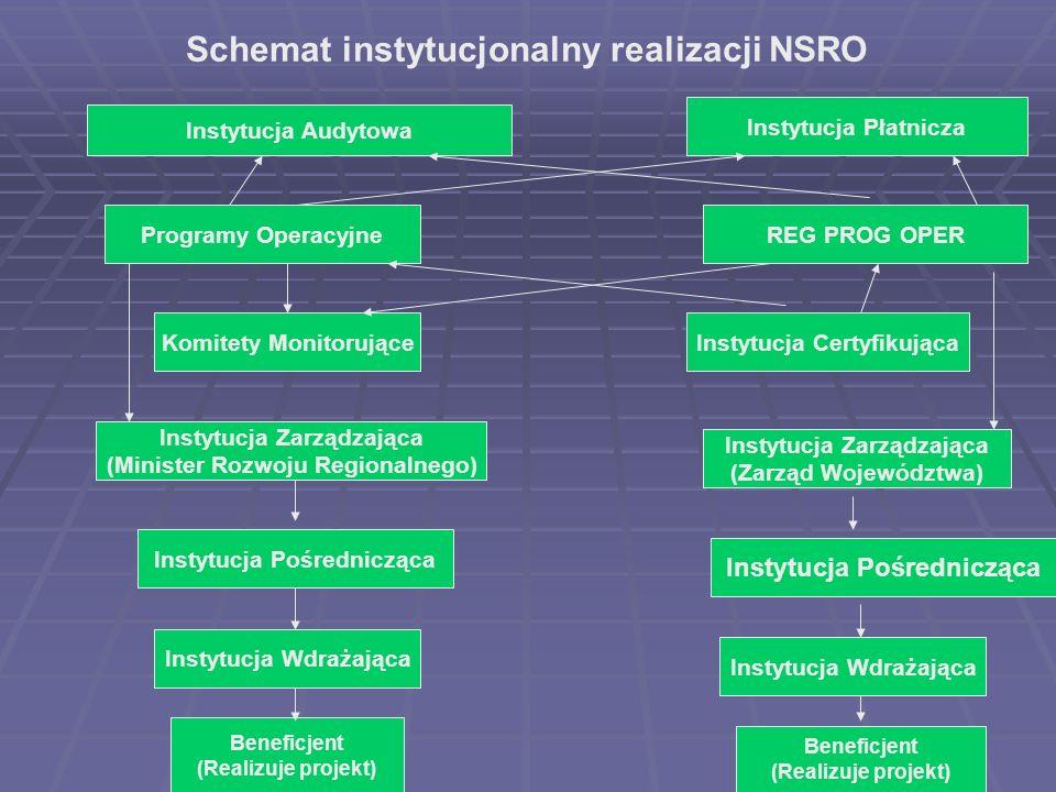 Schemat instytucjonalny realizacji NSRO