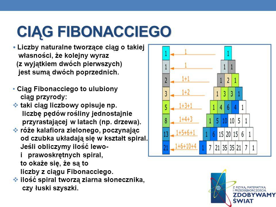 CIĄG FIBONACCIEGO Liczby naturalne tworzące ciąg o takiej
