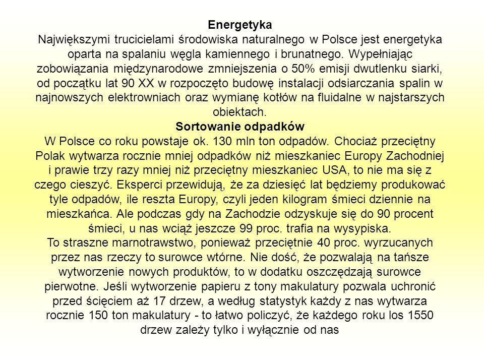Energetyka Największymi trucicielami środowiska naturalnego w Polsce jest energetyka oparta na spalaniu węgla kamiennego i brunatnego. Wypełniając zobowiązania międzynarodowe zmniejszenia o 50% emisji dwutlenku siarki, od początku lat 90 XX w rozpoczęto budowę instalacji odsiarczania spalin w najnowszych elektrowniach oraz wymianę kotłów na fluidalne w najstarszych obiektach.