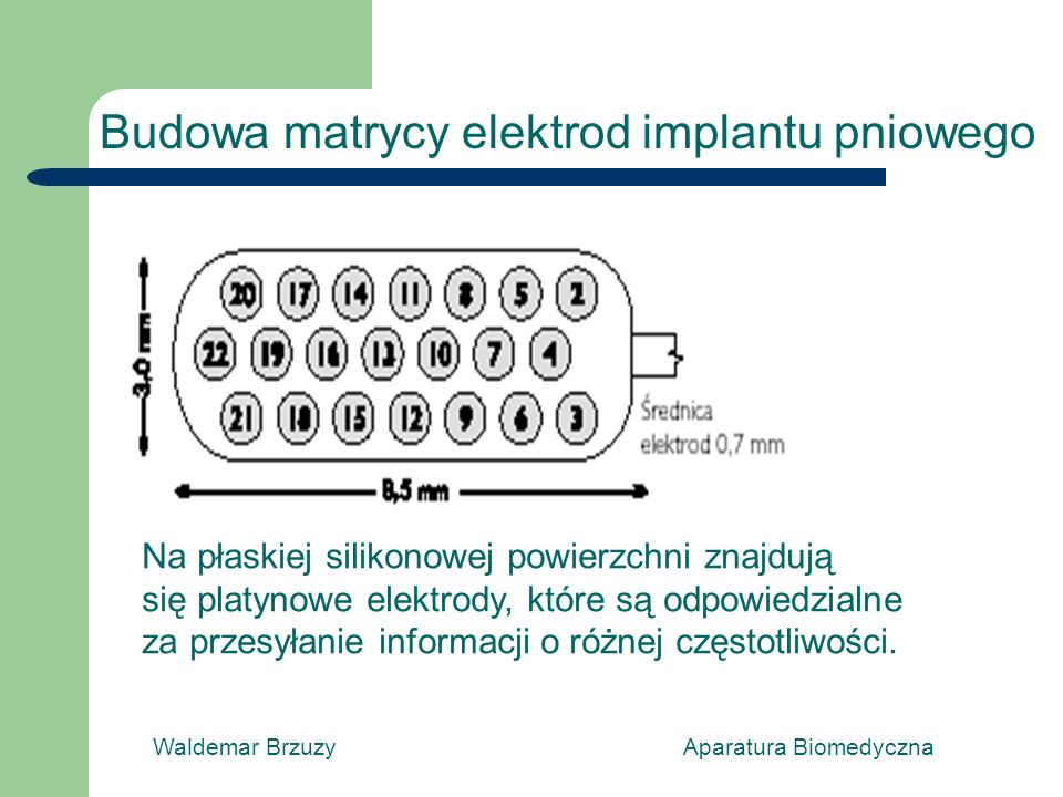 Budowa matrycy elektrod implantu pniowego