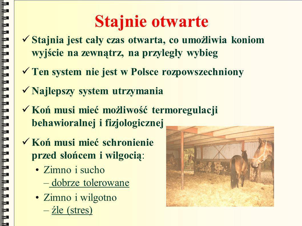 Stajnie otwarte Stajnia jest cały czas otwarta, co umożliwia koniom wyjście na zewnątrz, na przyległy wybieg.