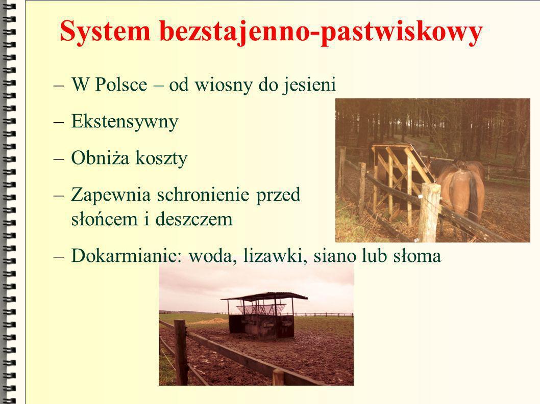 System bezstajenno-pastwiskowy