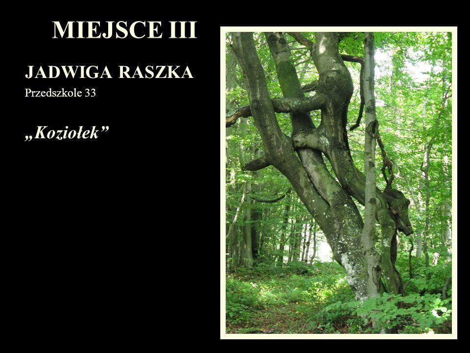 """MIEJSCE III JADWIGA RASZKA Przedszkole 33 """"Koziołek"""