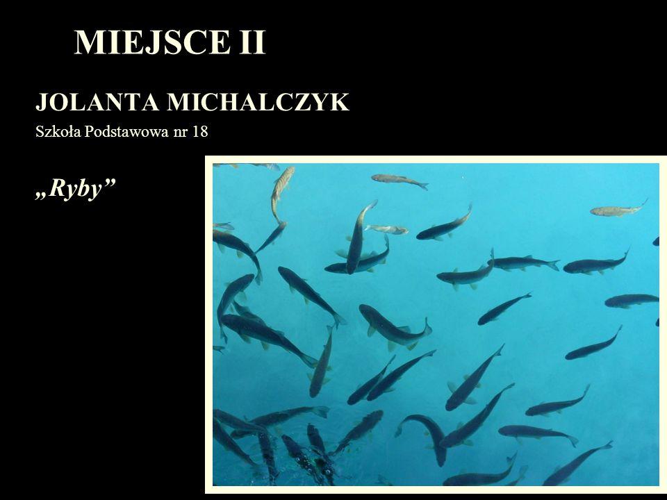 """MIEJSCE II JOLANTA MICHALCZYK Szkoła Podstawowa nr 18 """"Ryby"""