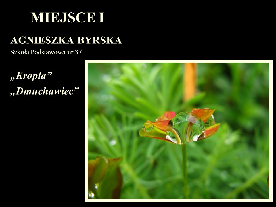 "MIEJSCE I AGNIESZKA BYRSKA ""Kropla ""Dmuchawiec"