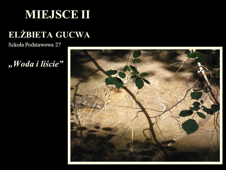 """MIEJSCE II ELŻBIETA GUCWA Szkoła Podstawowa 27 """"Woda i liście"""