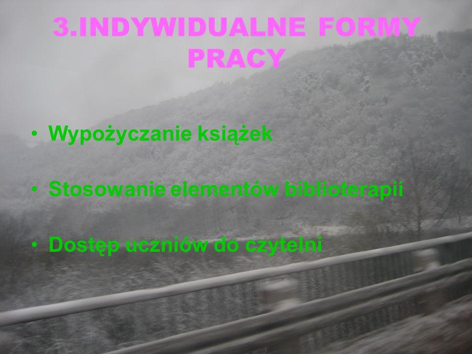3.INDYWIDUALNE FORMY PRACY