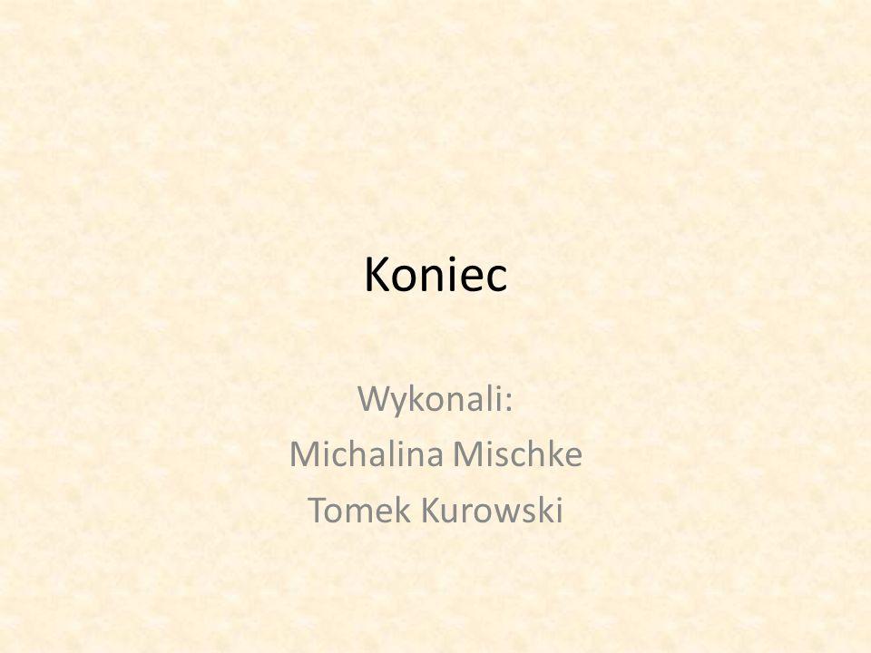 Wykonali: Michalina Mischke Tomek Kurowski