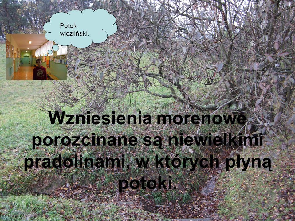 Potok wiczliński.