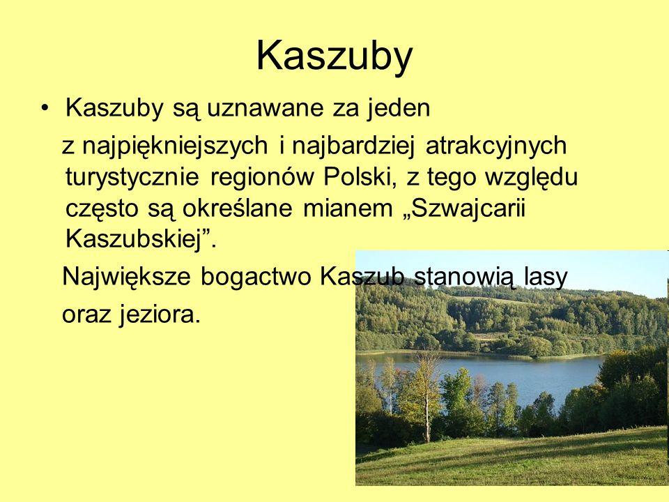 Kaszuby Kaszuby są uznawane za jeden