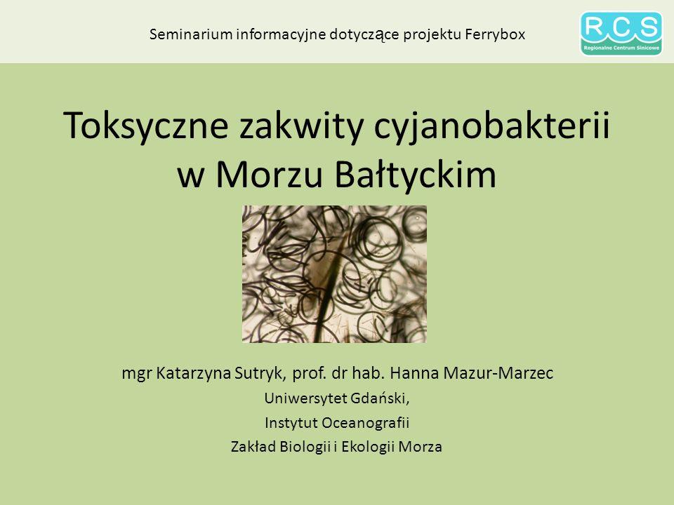Toksyczne zakwity cyjanobakterii w Morzu Bałtyckim
