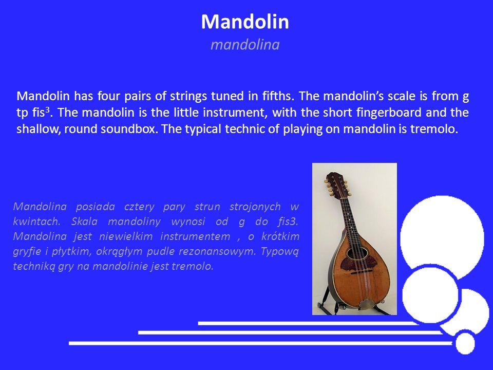 Mandolin mandolina