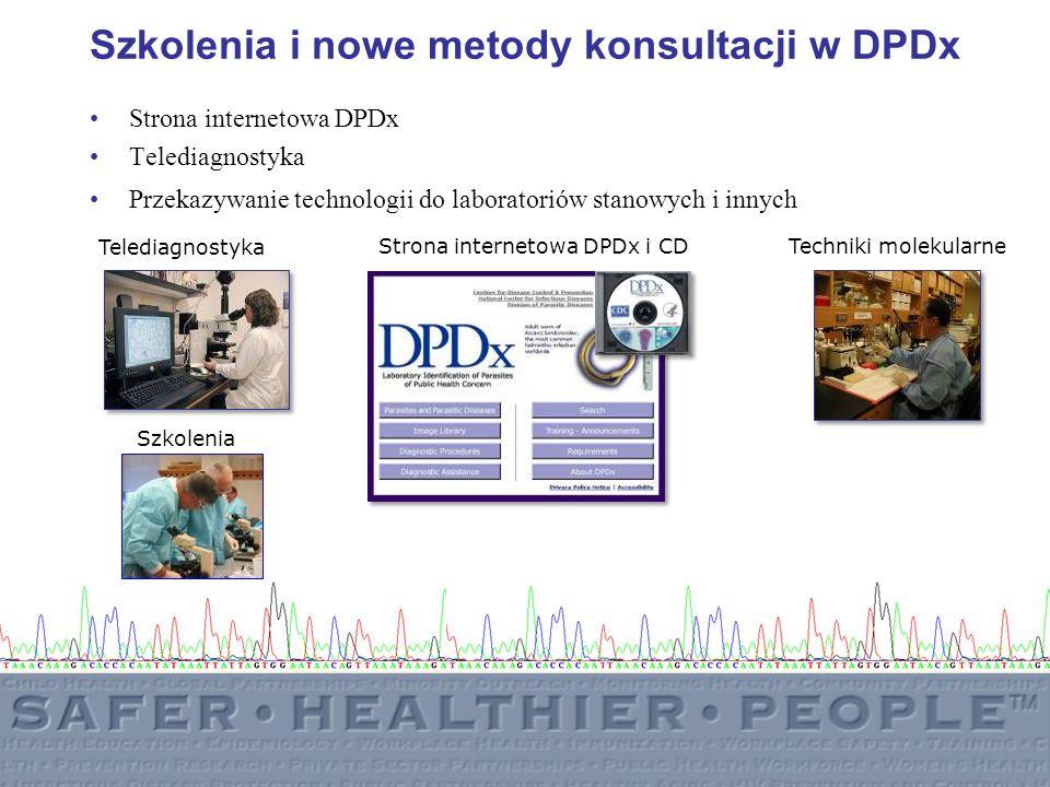 Szkolenia i nowe metody konsultacji w DPDx