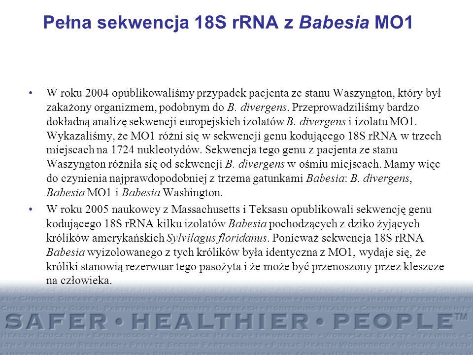 Pełna sekwencja 18S rRNA z Babesia MO1
